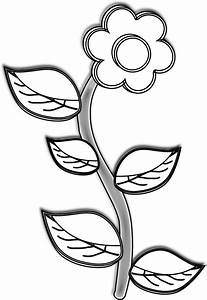 Simple Black And White Sunflower Drawing | Clipart Panda ...