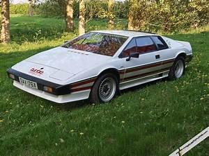 Lotus Esprit Turbo : pride joy 1981 lotus turbo esprit ~ Medecine-chirurgie-esthetiques.com Avis de Voitures