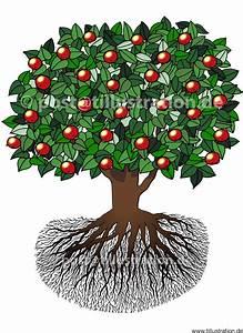 Apfelbaum Für Balkon : natur garten archive tillustration ~ Michelbontemps.com Haus und Dekorationen
