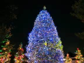 wallpapers background christmas tree christmas wallpapers christmas pictures