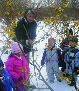 Britzer Garten Wm by Freilandlabor Britz Eine Kita Im Winter Ytti