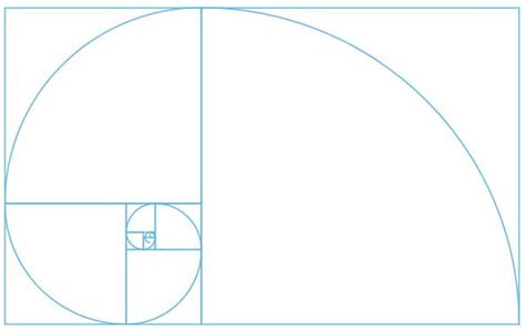 the golden ratio sketch template golden ratio design template golden ratio design web