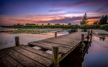 Dock Lake Pond Pier Forest Bridge Fishing