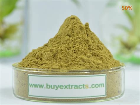 Where To Buy Fenugreek Seed Extract Manufacturer Suppliers