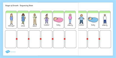 stages  growth sequencing activity sequencing sheet