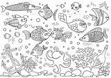 Aquarium Coloring Fish Underwater Anchor Octopus Corals Illustration Bottle Shells Stones Vector Athlete Sailboat Animal Background Markings Wildlife Shell Istockphoto sketch template