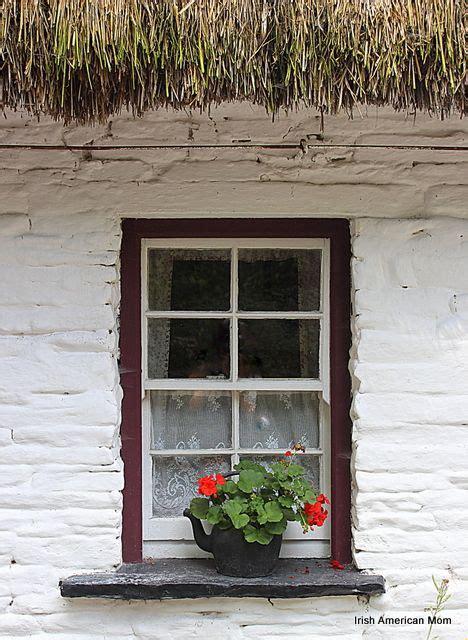 Window Sills Ireland by Geraniums Growing In An Black Kettle On The Window