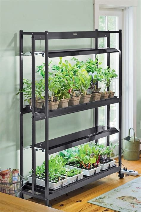 Best Indoor Grow Lights by 14 Best Gardening Indoors Images On Gardening