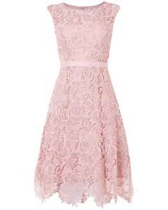 fit and flare wedding guest dress lace fit and flare dress powder phase eight
