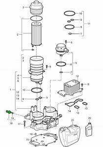 Porsche Cayenne Oil Pressure Switch 95560609110