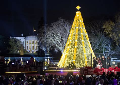 Image result for images national christmas tree decorated