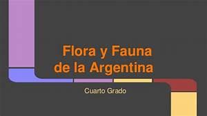 Flora y fauna de la Argentina