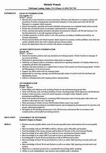 Coordinator Resume Examples Ap Coordinator Resume Samples Velvet Jobs