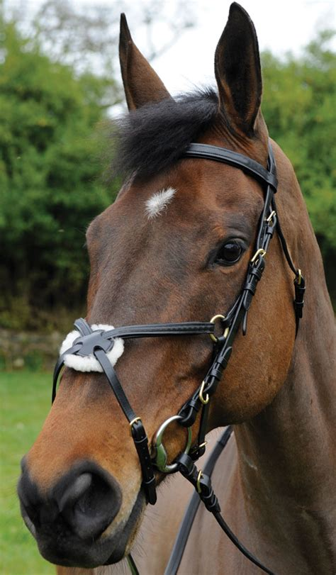 comfort grackle bridle reins celtic equine