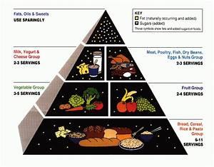 Food Pyramid  Nutrition