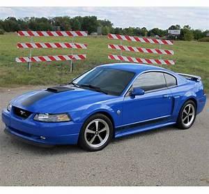 2004 Mach 1 mustang | Ford mustang, Mustang, Mustang mach 1
