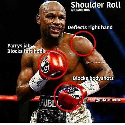 Mayweather Floyd Boxing Techniques Training Martial Arts