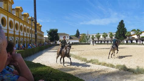 jerez frontera spain horse andalusian
