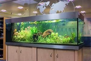 Liter Aquarium Berechnen : 720 liter s wasser aquarium aquaristik stratmann ~ Themetempest.com Abrechnung
