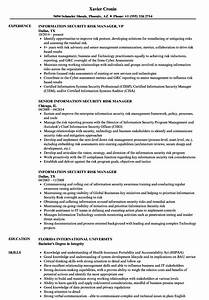 information security risk manager resume samples velvet jobs