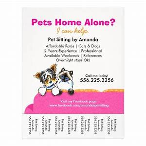 pet sitter ad yorkie cat couch pink tear sheet With dog babysitting app