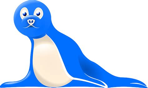 seal blue color free pictures 1778 images found