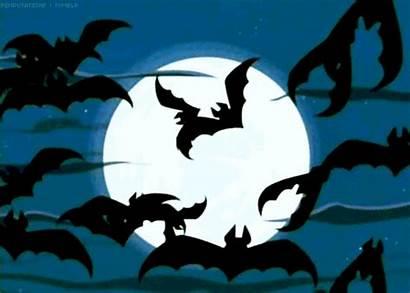Halloween Bat Animated Bats Moon Spooky Flying