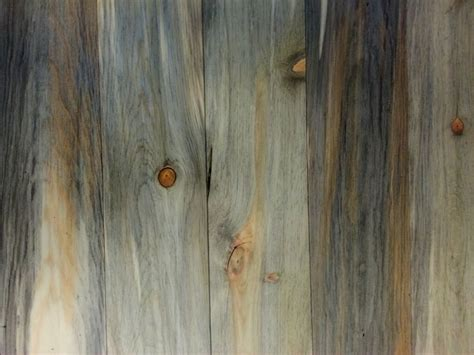 Beetle Kill Pine Lumber Boulder by 1000 Images About Beetle Kill Blue Pine On