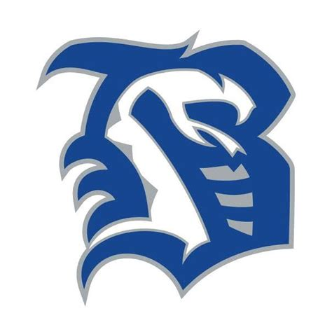 Boys Varsity Football - Belleview High School - Belleview ...