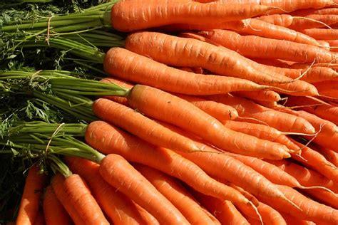 cancer juicing juice treatment patients carrot
