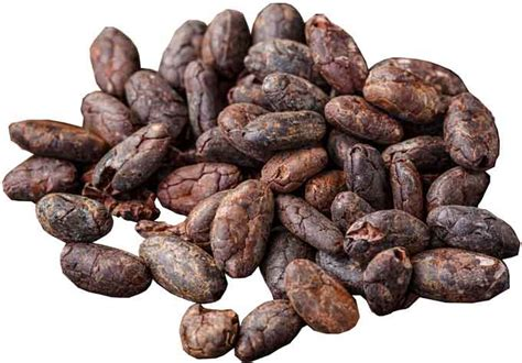 cocoa beans plantation health benefits facts