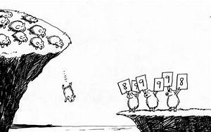 Do Lemmings Really Commit Mass Suicide? | A New Life In Norway