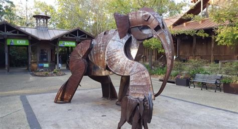 zoo mississippi hattiesburg ms onlyinyourstate hiding underrated