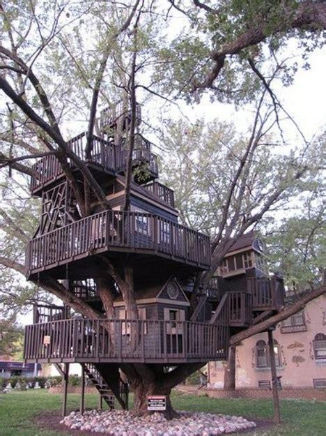 treehouse taster  wildly  types  tree houses urbanist