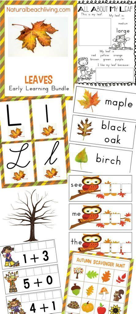 the best kindergarten and preschool leaf theme lesson plan 929 | Leaves Preschool Theme pin 444x1024