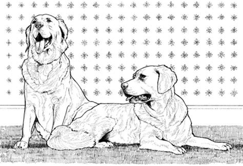 dog coloring pages  yuckles