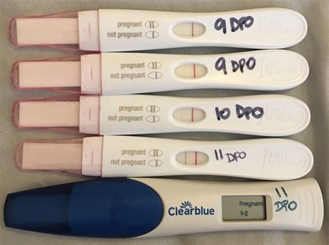 dollar general pregnancy test progression