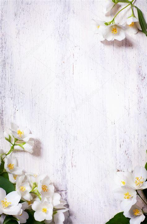 art jasmine spring flowers frame   wood background