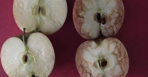 teacher  bruised apple  show crushing effects