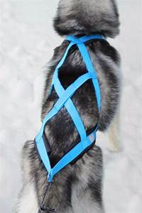 Weight Pulling Dog Harness X