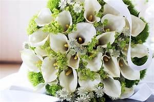 Blumen Bedeutung Hochzeit : blickfang brautstrau toll was blumen machen ~ Articles-book.com Haus und Dekorationen