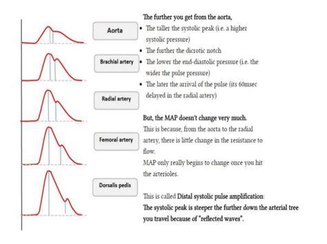 Basic Haemodynamic Monitoring