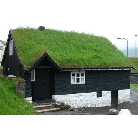 how to build a green roof an environmentally friendly green building project