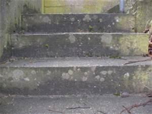 Alte Betontreppe Sanieren : sanierungsbed rtige betonstufen einer au entreppe im ~ Articles-book.com Haus und Dekorationen