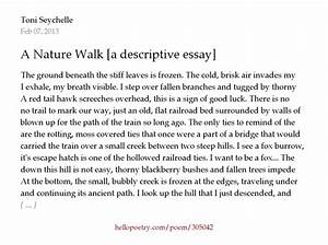 Beauty of nature essay dream vacation essay natural beauty of kerala ...