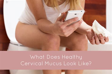 What Does Healthy Cervical Mucus Look Like — Red Tent Sisters