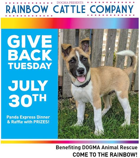 dogma animal rescue home facebook
