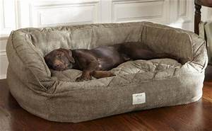20 perfect diy dog beds ideas for your furry friend With best dog bed for pitbull