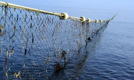 types  commercial fishing nets