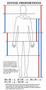 235 Best Charts  Diagrams  Interesting Tidbits Images On
